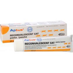 Aptus Reconvalescent Cat Pasta